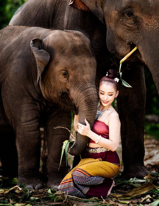 Thai Model and Elephants on a 5 Day Chiang Mai Photo Workshop